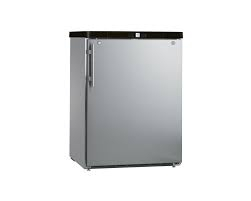 Liebherr GGUESF1405 Commercial Freezer